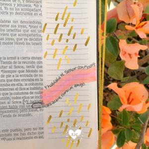 Bible journaling en español | La Biblia hecha arte