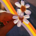 Con flores 5