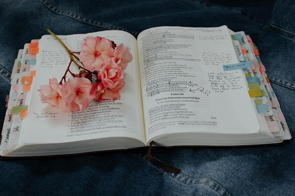Romanos 8:12-17 | Estudio Bíblico